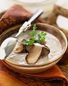 Cream of mushroom consommé soup