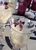 Sorbet mit kandierten Veilchen und Lavendelblüten
