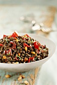 Lentil and sliced dried magret salad