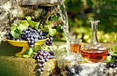 grapes and rosé wine outdoors