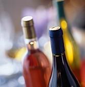 Ungeöffnete Weiss-, Rot- und Roséweinflasche