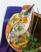 Mackerel chilled in white wine on slice of bread