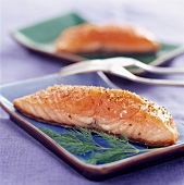 Salmon steak à l'unilatérale (topic: beginner)