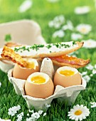 Boiled eggs and fancy soldiers