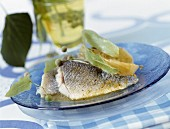 Sea bream fillets with lime blossom