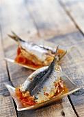 tomato sardines (topic: tajines)
