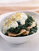 Spinach melted with salmon in béchamel sauce