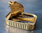 Geöffnete Dosen mit Sardinen