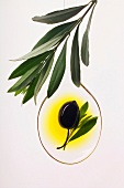 black olives in spoonful of oil with olive branch