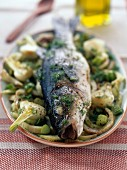 Bass with fennel