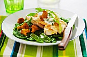 Veal with sugar peas and chanterelles