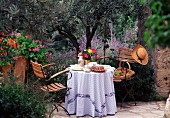 A table laid for breakfast outside in front of an olive tree and lavender in Provence, France