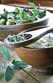 Buchin apple compote and fresh sage on a wooden spoon