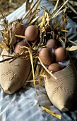 Fresh eggs and straw in a pair of clogs