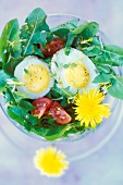 quail egg and dandelion salad