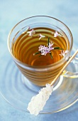 Rosemary herbal tea