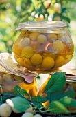 mirabelle plum syrup