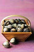 Basket of cockles (topic: cockles)