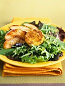 Baked goat's cheese with caramelised apple wedges on green salad
