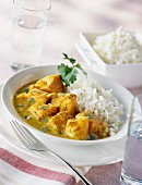 Salmon and onion curry with rice