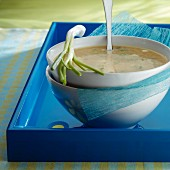 Parmesan soup