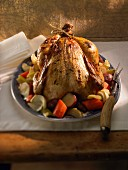 Roast guinea fowl with vegetables