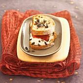 Sandwich mit Thunfischmousse