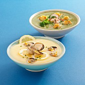Velvety broccoli soup with razor clams and velvety lemon soup with clams