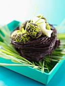 Chocolate and pistachio nest filled with chocolate eggs