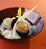 Scallops with truffles and parmesan tuile biscuit