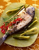 Sea bream with dill and fennel