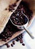 Kaffeebohnen im Jutesack mit Kaffeeschaufel