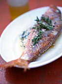 Roast red mullet with rosemary