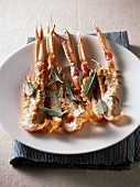 Spiny lobster with sage butter