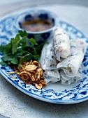Reisteigröllchen mit gebratenem Schweinefleisch und Röstzwiebeln