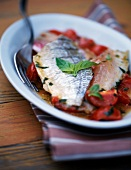 Sea bream fillet with cherry tomato and basil fondue