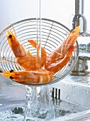 Frische Shrimps in einem Sieb abbrausen