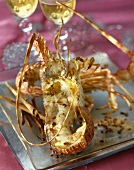 Spiny lobster with Sechuan pepper