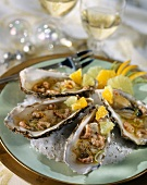 Oysters with brown shrimps and citrus fruit