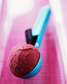 A scoop of raspberry sorbet on an ice cream scoop
