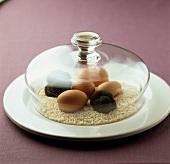 Trüffel zusammen mit Eiern und Reis unter Glasglocke lagern