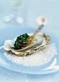 Gefüllte Auster mit Petersilienpesto