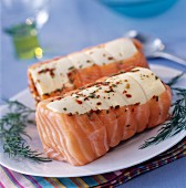 Raw salmon roasts
