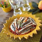 Sardines in tomato sauce