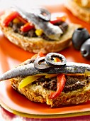 Tapenade,marinated sardine and pepper open sandwich