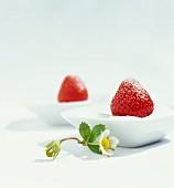 Fresh strawberries in bowls of sugar