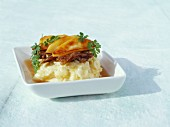Duck parmentier with apples