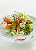 Salad with young vegetables on courgette purée with garlic