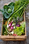 Crate of garden vegetables