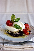 Mozzarella with tapenade and stewed cherry tomatoes